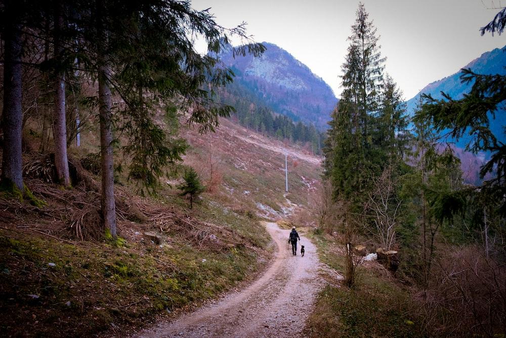 man walking on pathway near mountain range