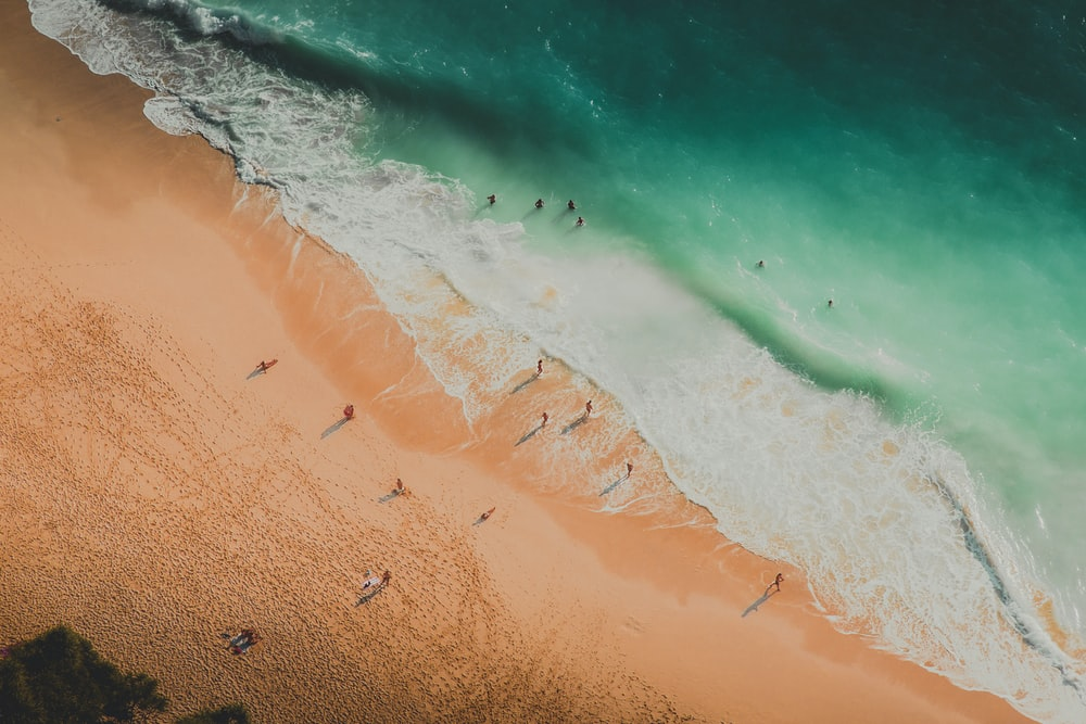 aerial photography of people at the beach