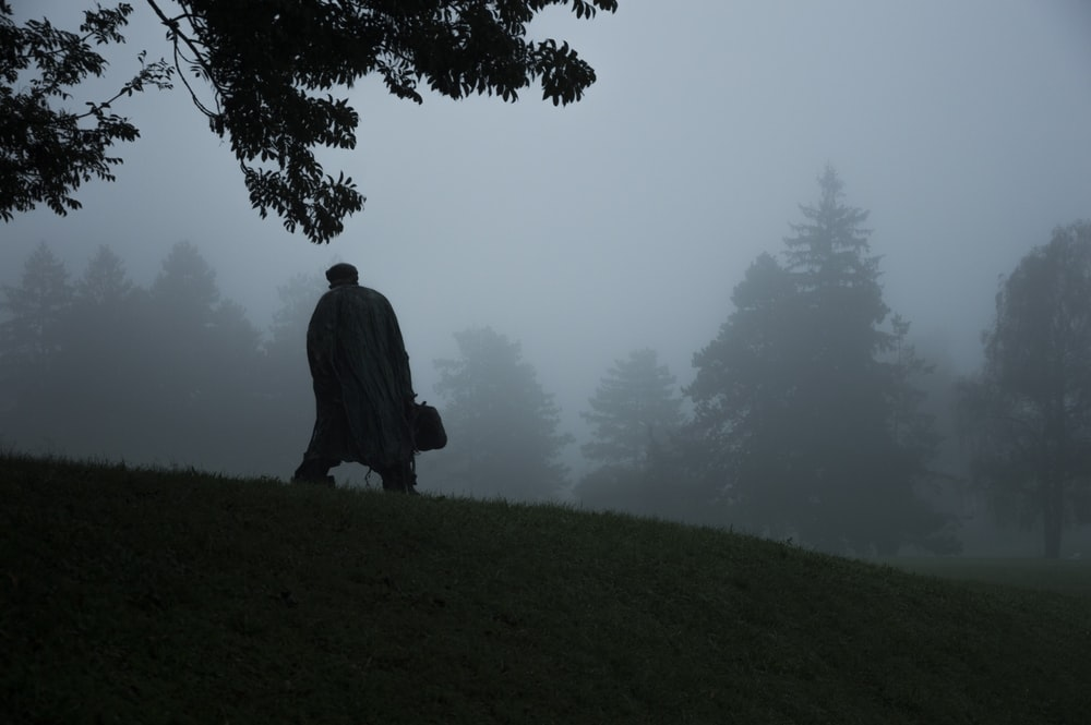silhouette of person near tree