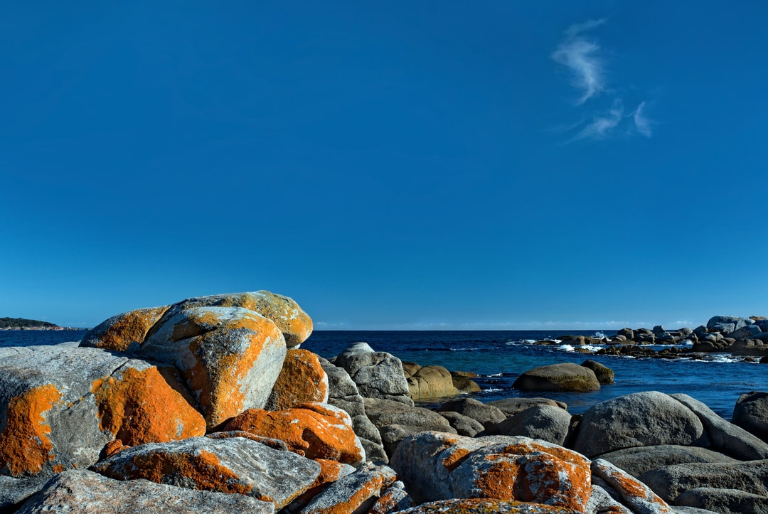 An early morning photo of lichen-covered boulders and the sea between Burns Beach and St Helens Point, Tasmania, Australia.