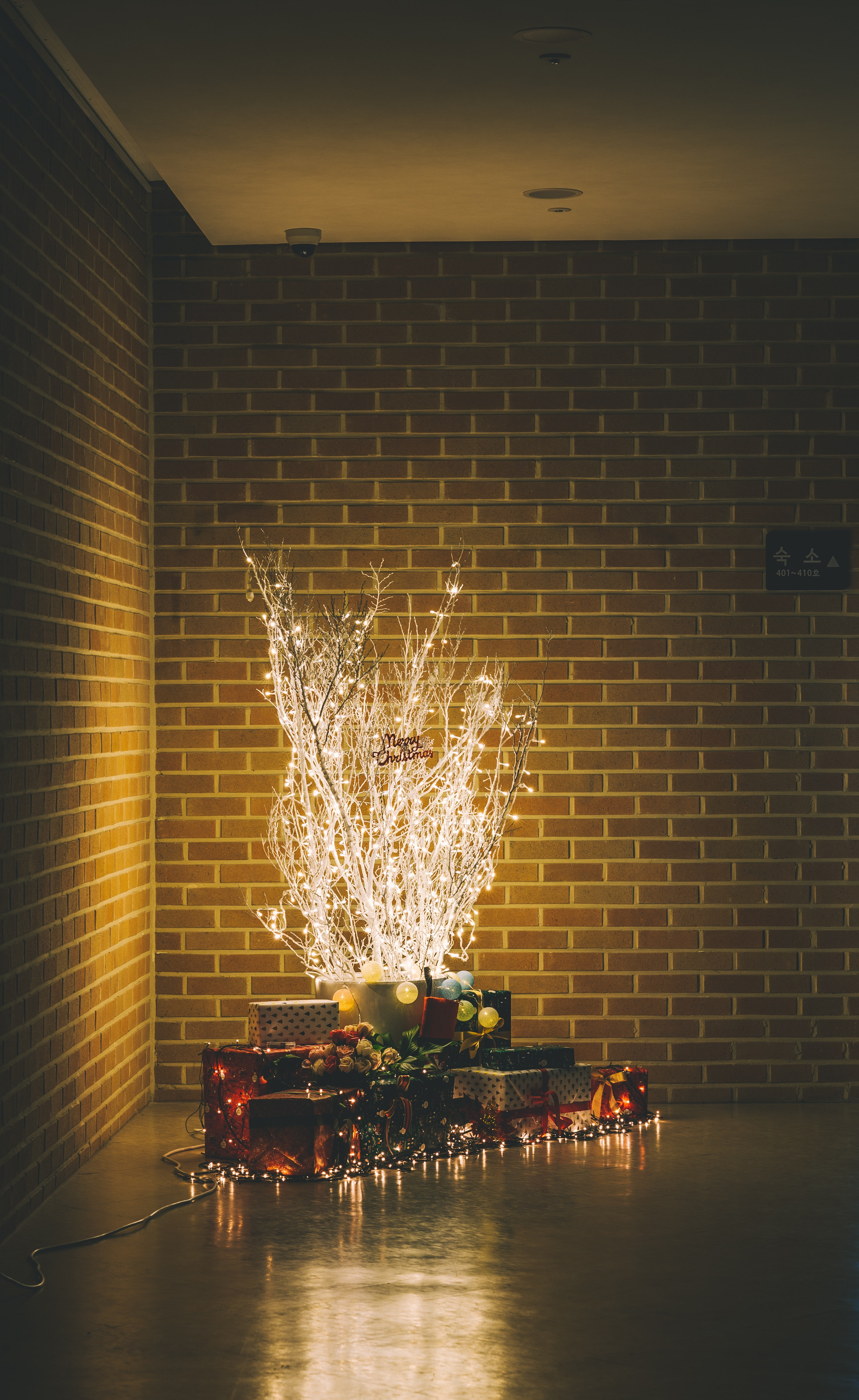 boxes near white lighted holiday tree