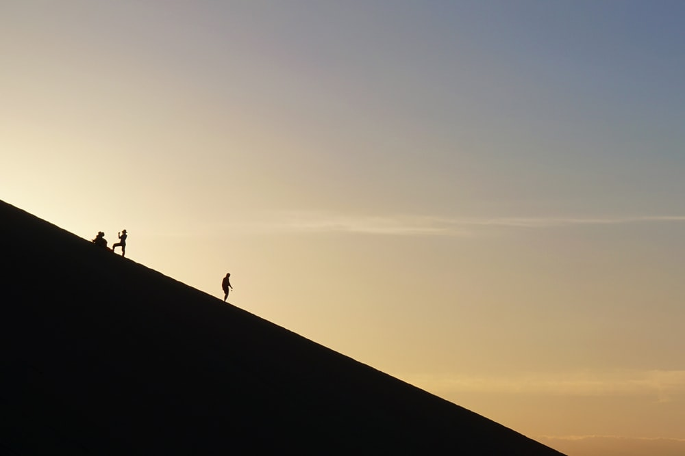 people silhouette during daytime