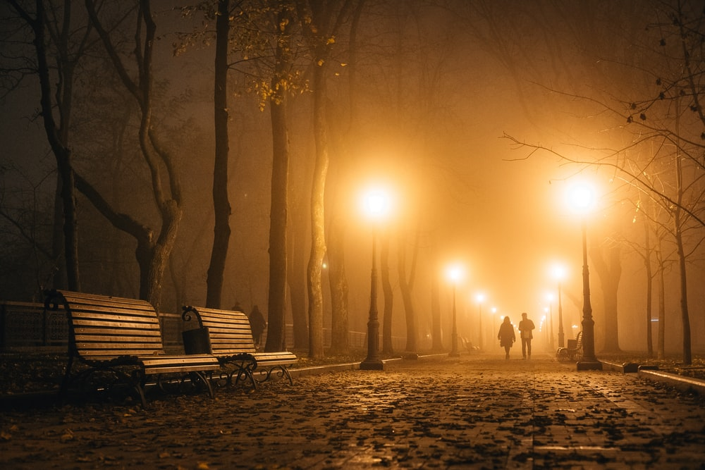 two persons walking at the park during night