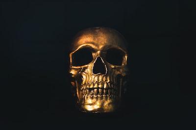 gold skull decor skull teams background