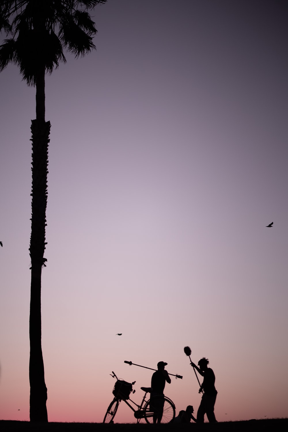 silhouette photography of three people near bike and coconut tree