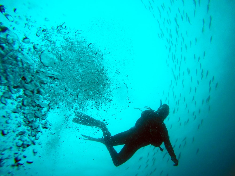Explore the Outstanding Scuba Diving In India