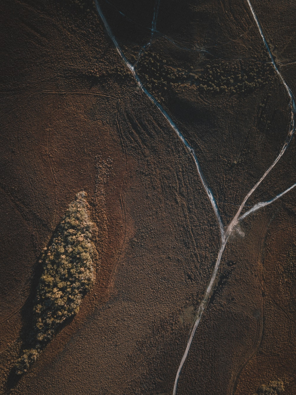 aerial photography of brown field during daytime