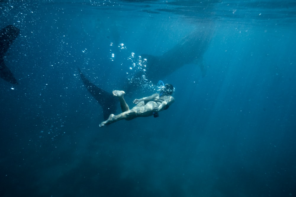 woman under water photo