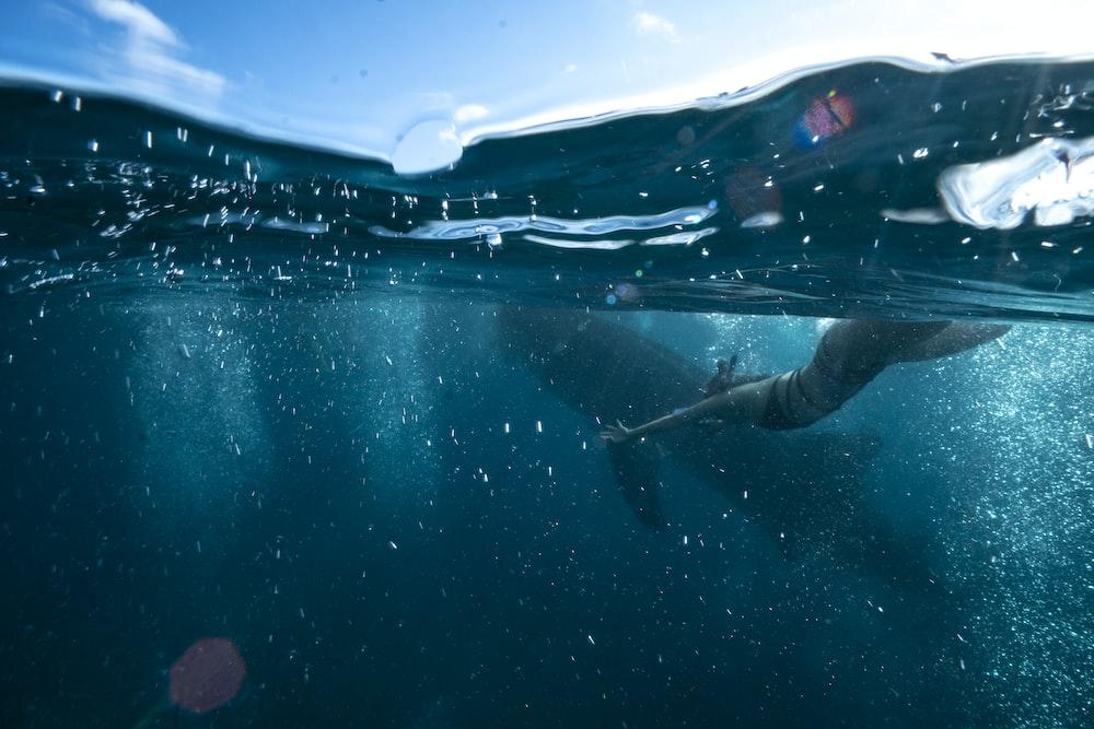 person swimming underwater