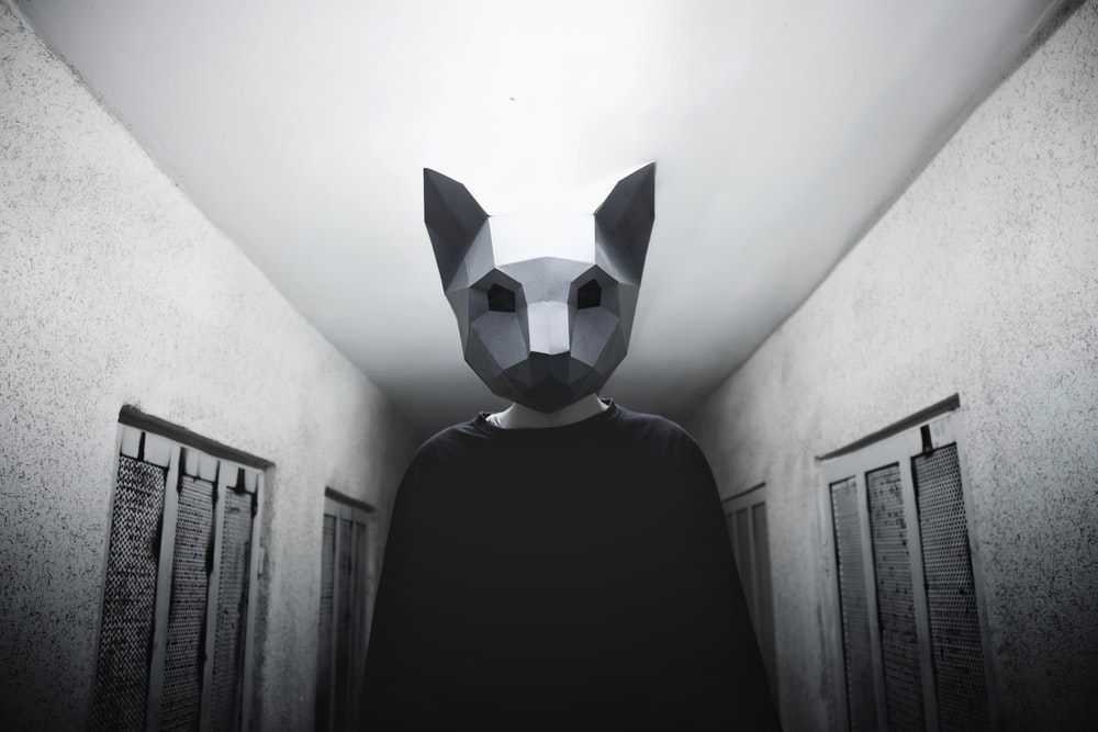 person wearing gray cat mask