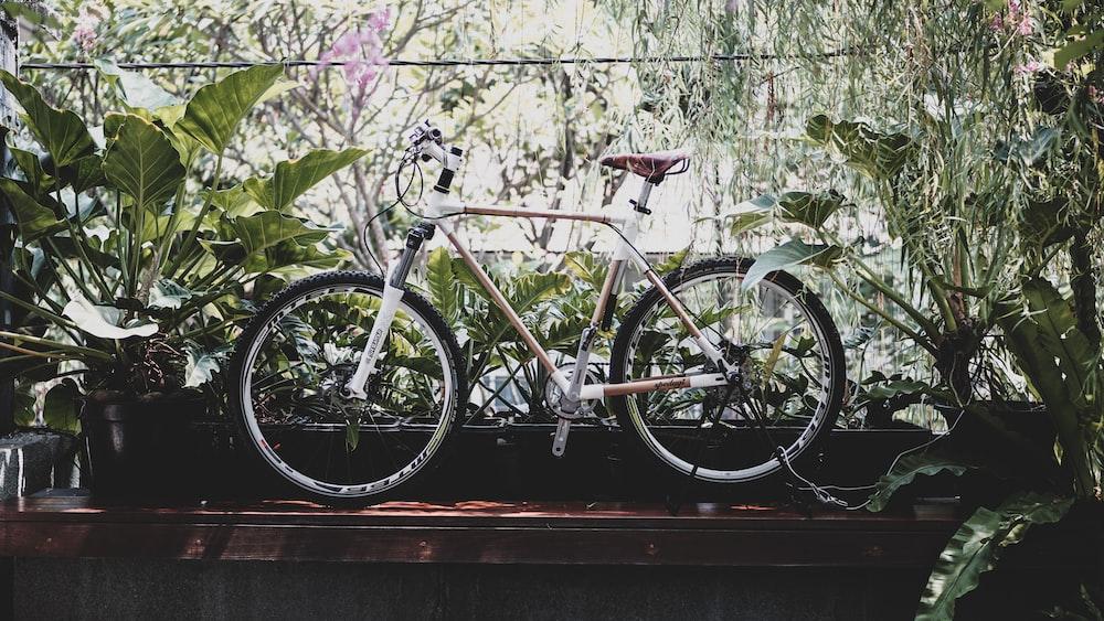 brown hardtail bike