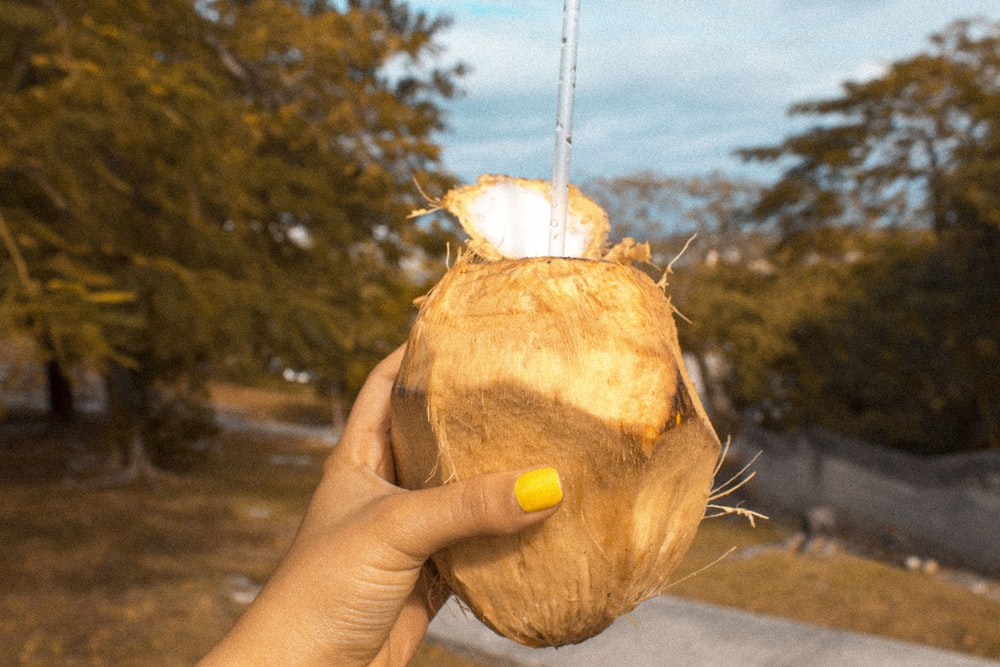 person holding coconut fruit with zip straw