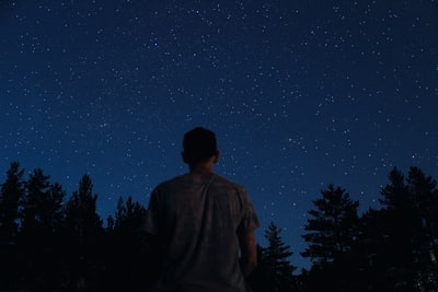 man standing near trees under stars during night-time