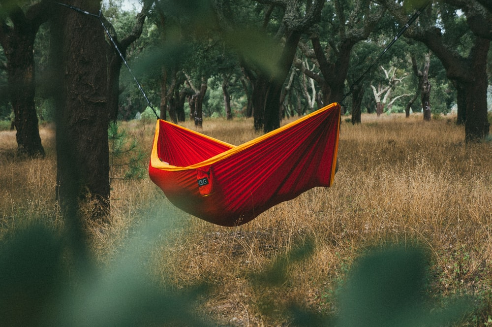 red and yellow hammock hanging between tree