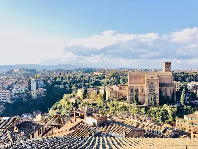 Viñedo en Siena, Italia