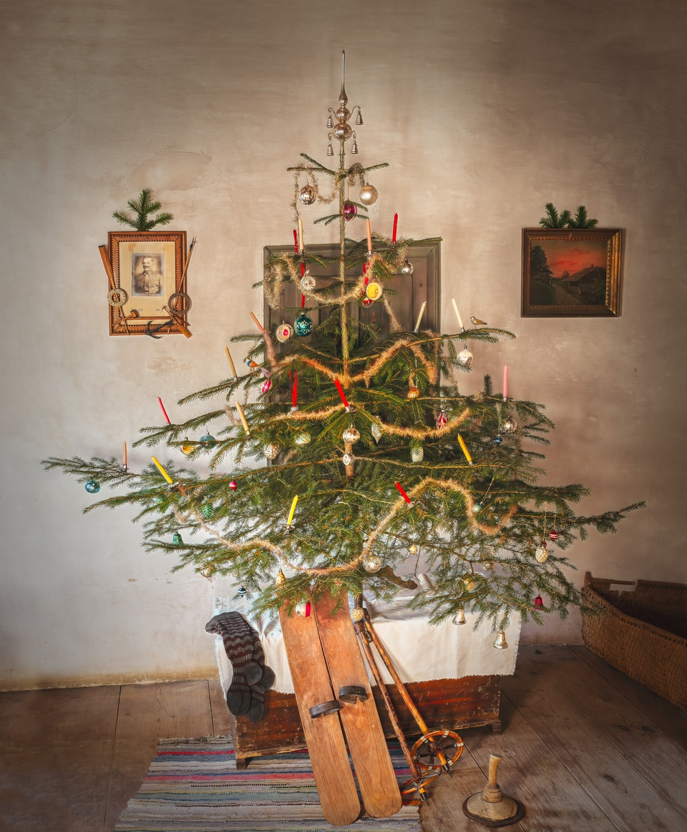 green Christmas tree and pair of brown snow skis