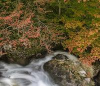 waterfalls raging