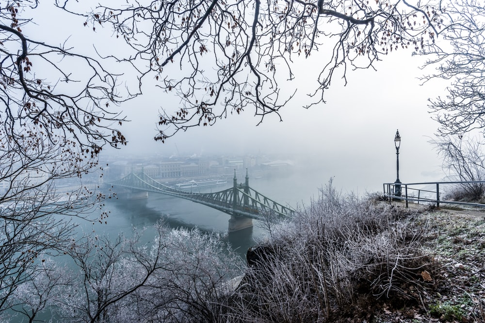 black bridge during foggy day