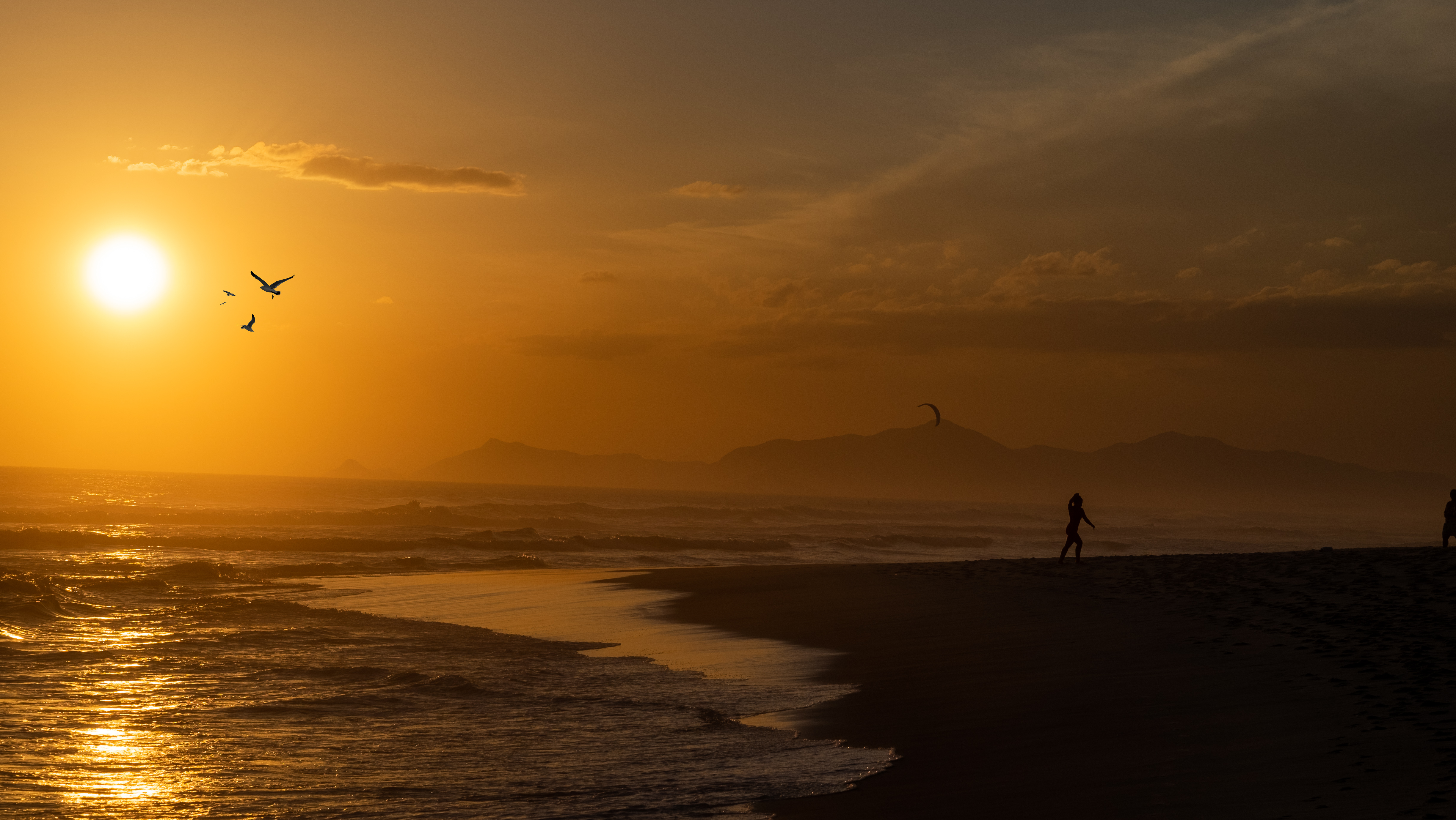 silhouette photography of woman on seashore