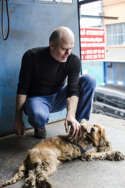 man petting English cocker spaniel