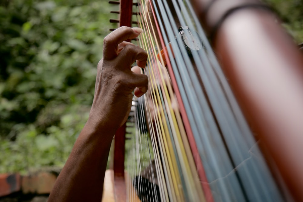 person playing string instrument