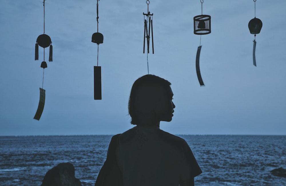 silhouette photography of woman facing horizon