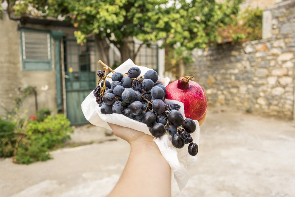 person holding blackberries and red pomegranate fruit