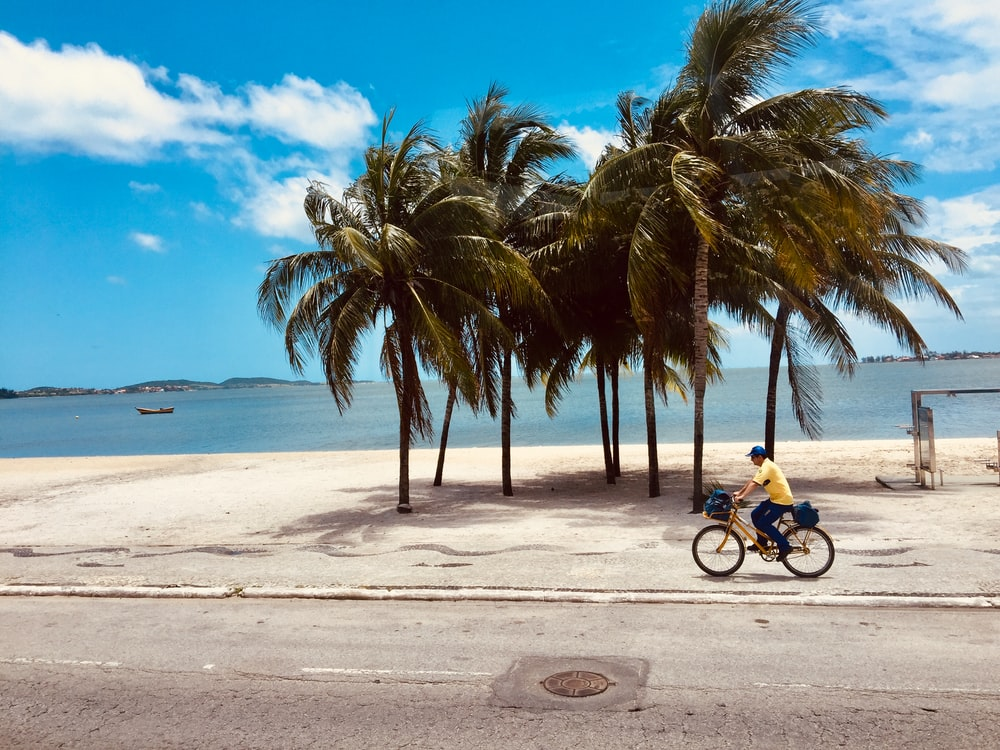 man riding bicycle near the beach during daytime