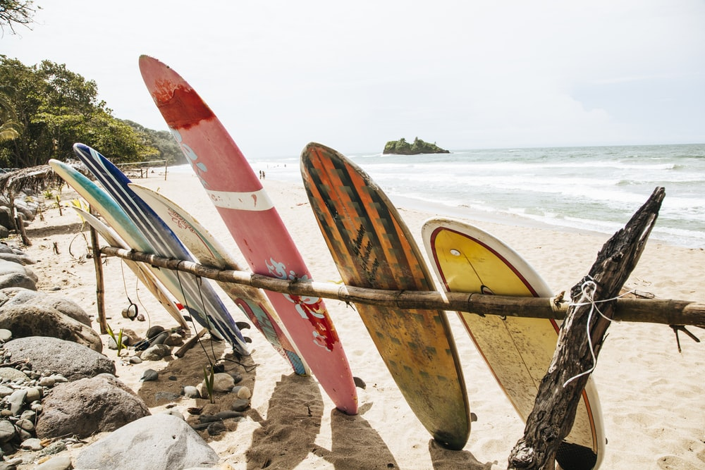 assorted-color surfboards near shores