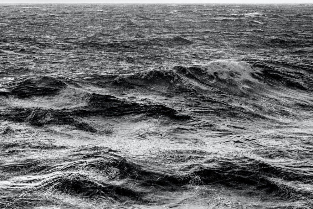grayscale photo of sea