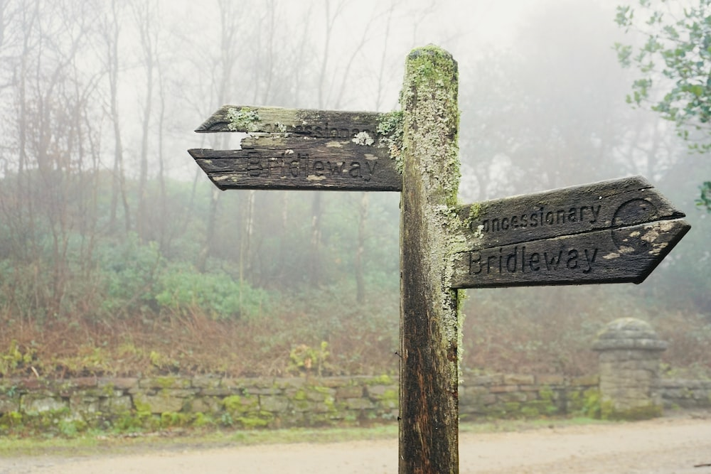 gray wooden road sign