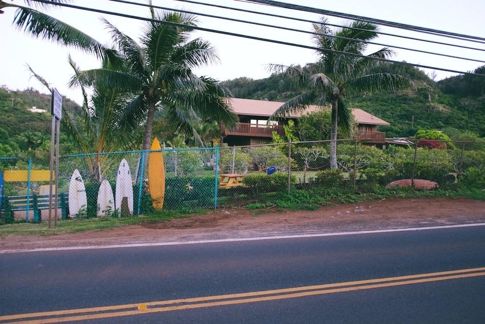 surfboards near fence
