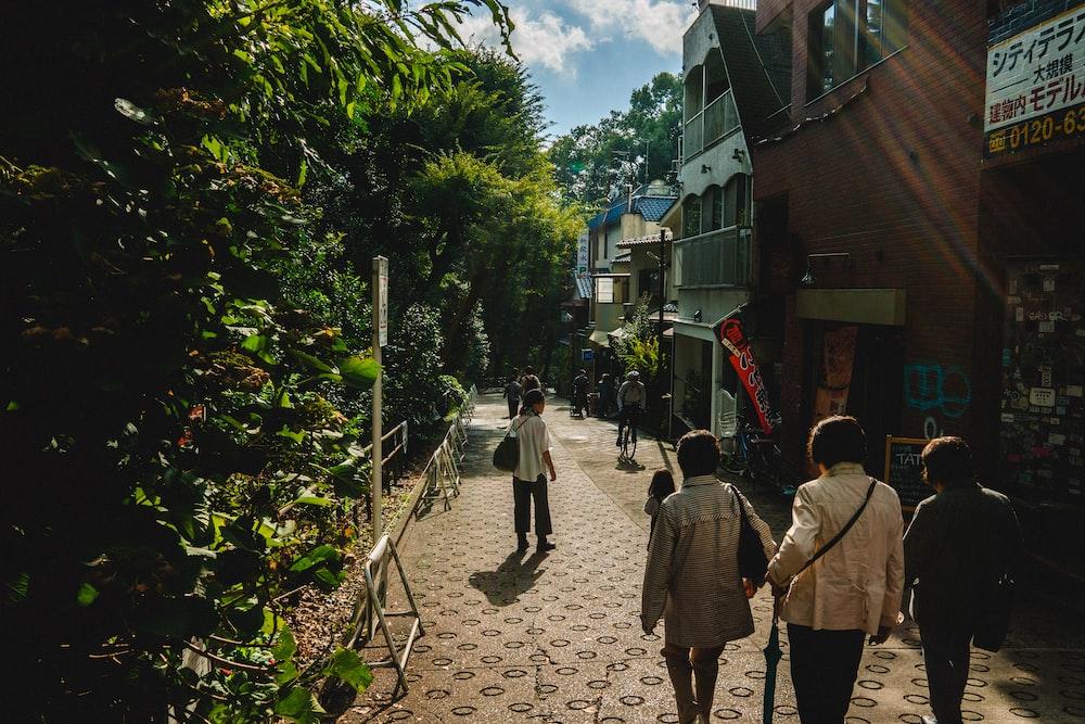 women walking on street between trees and buildings