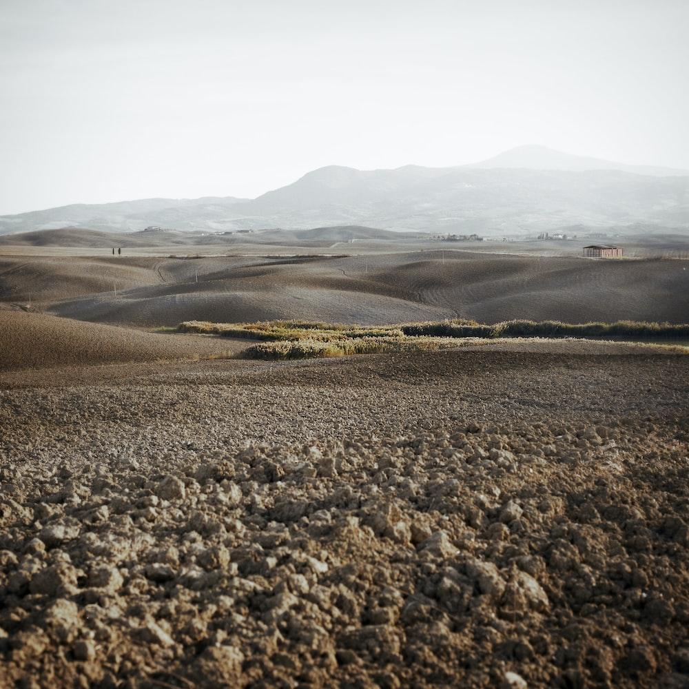 landscape photograph of steppe