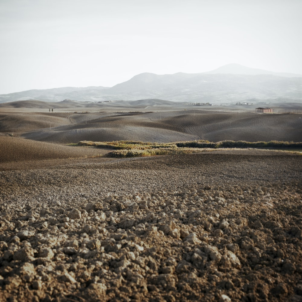 landscape photograph of steppe
