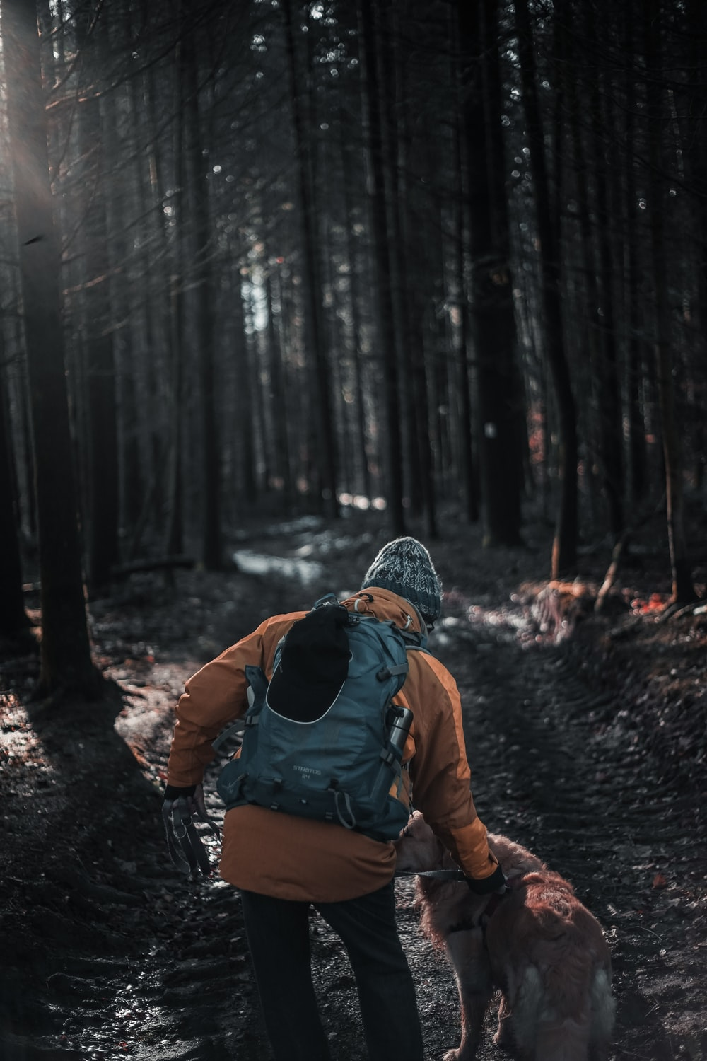 man with hydration pack walking in forest together with dog