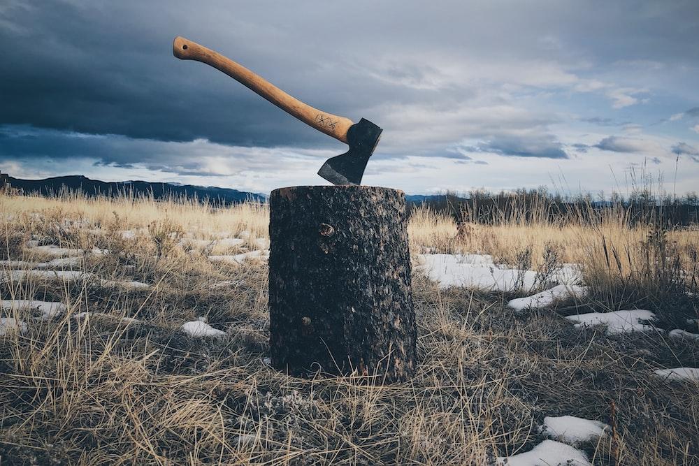 brown handled axe on log