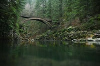 gray concrete bridge across on river at daytime