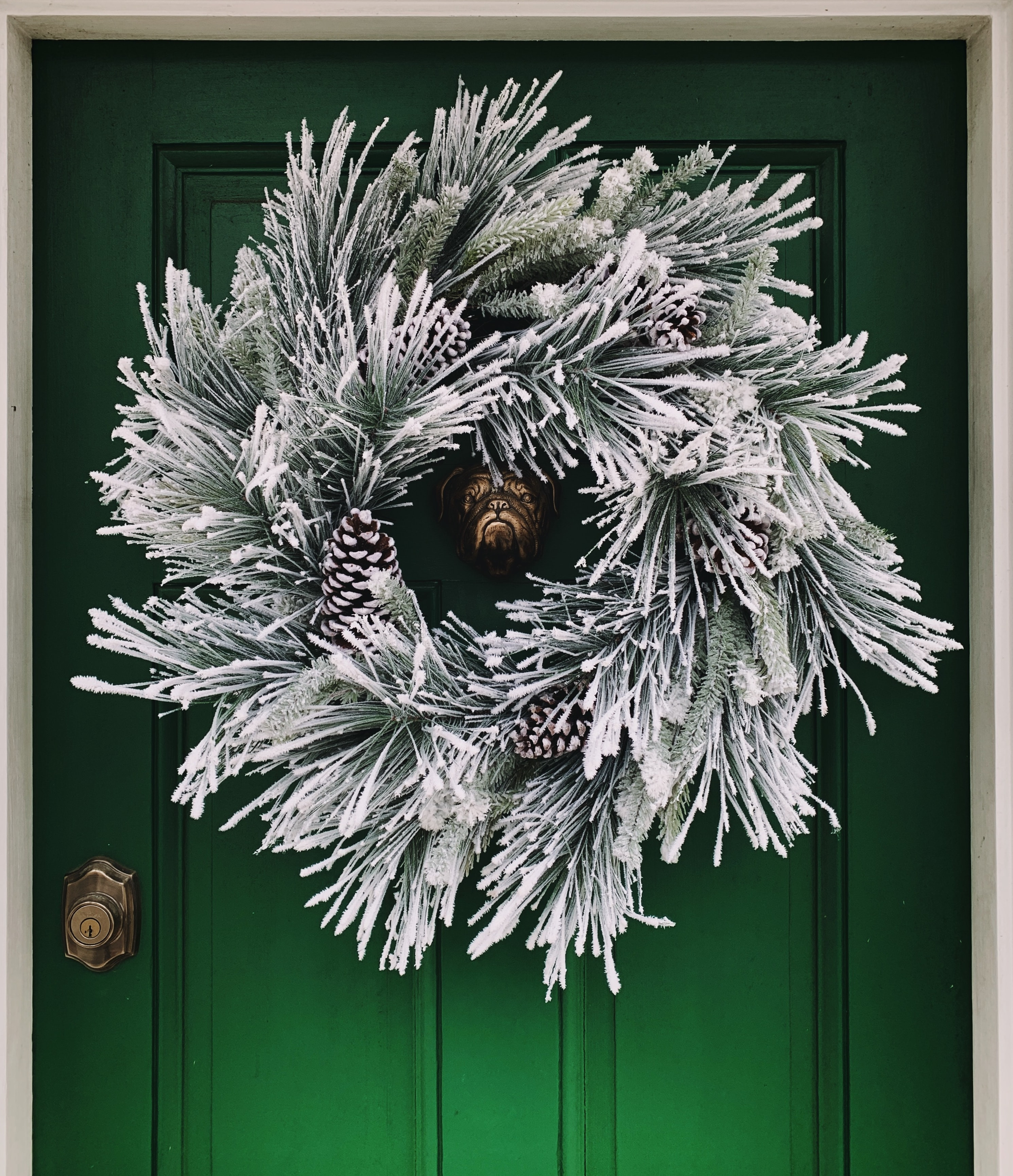 Holiday Wreath Pictures Download Free Images On Unsplash