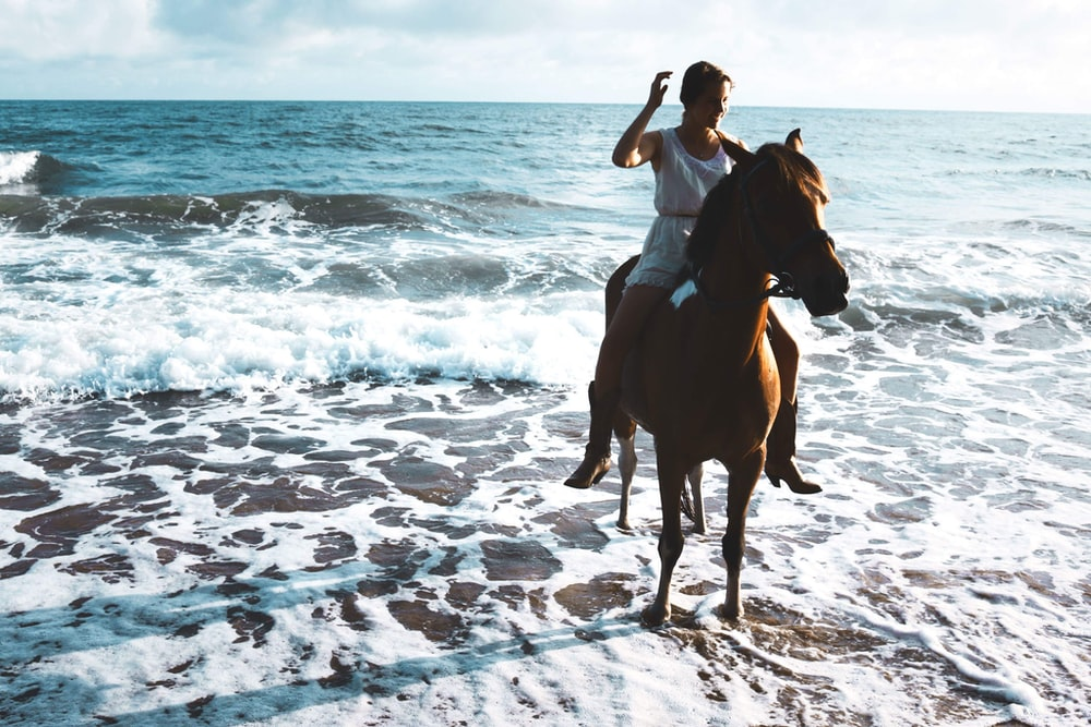 woman riding brown horse on seashore during daytime
