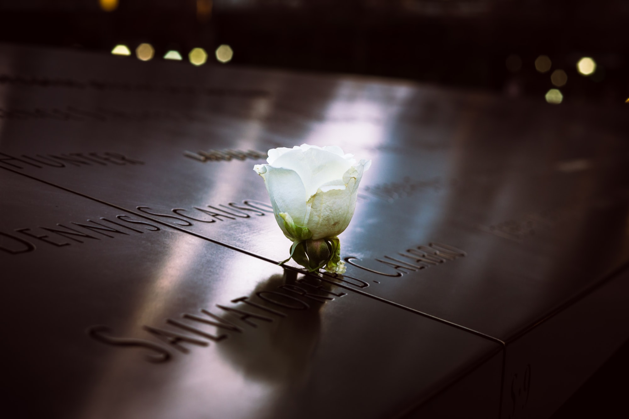 9/11 Memorial // Roses don't take away the pain