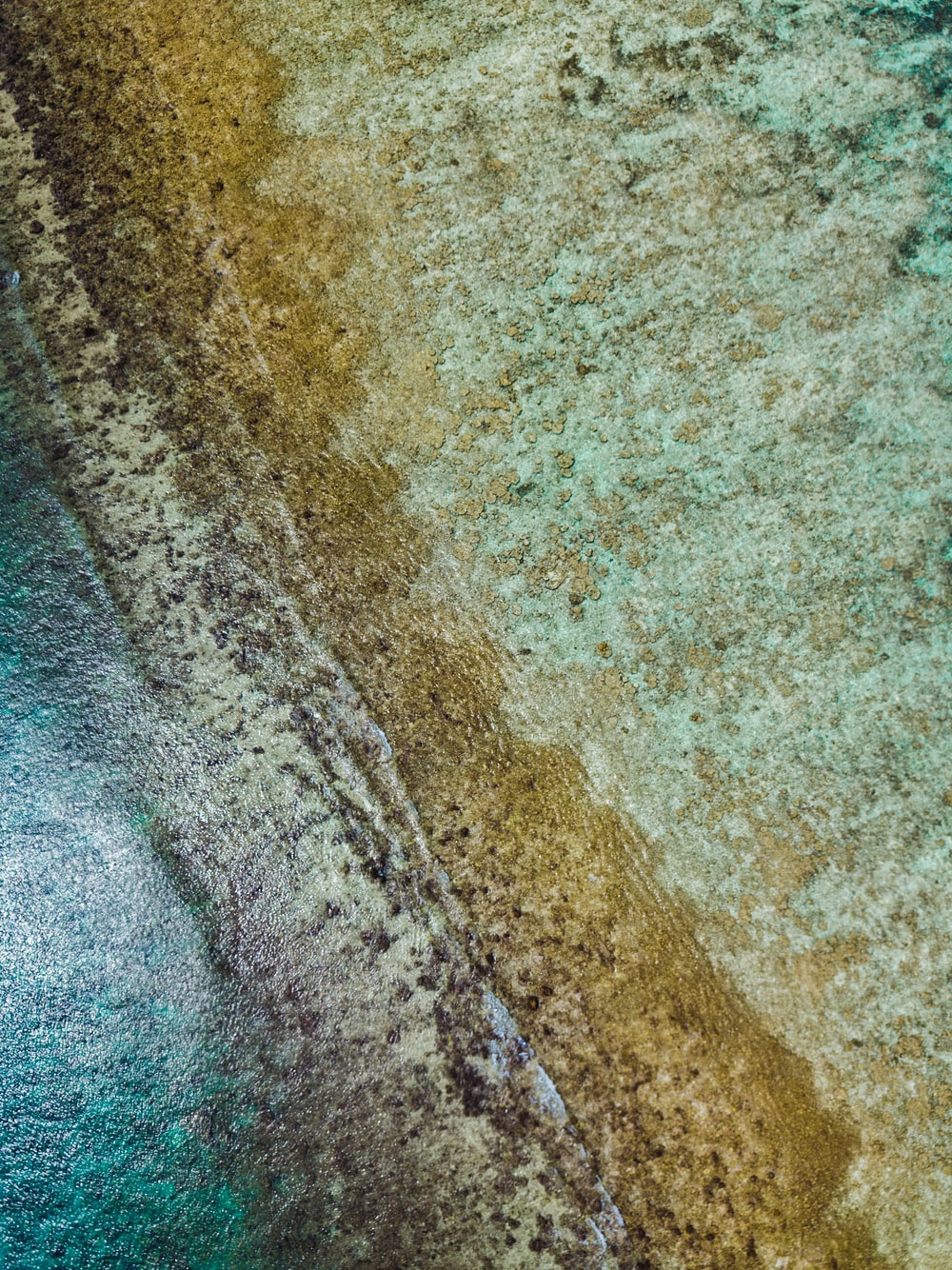 aerial photography of white sand beach