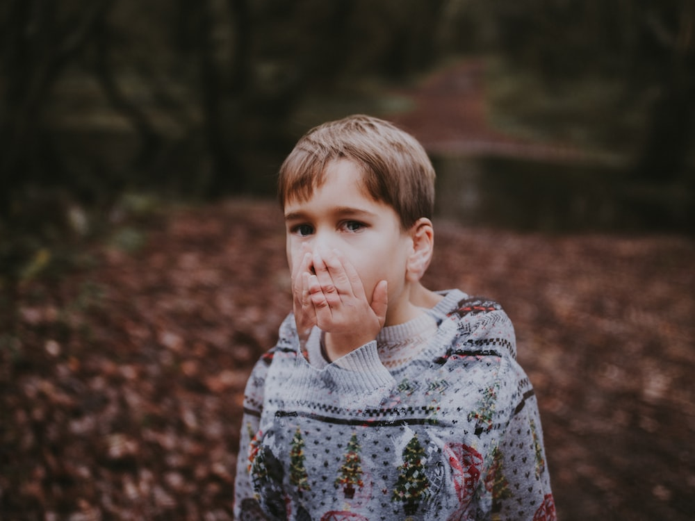 boy in gray and green sweater