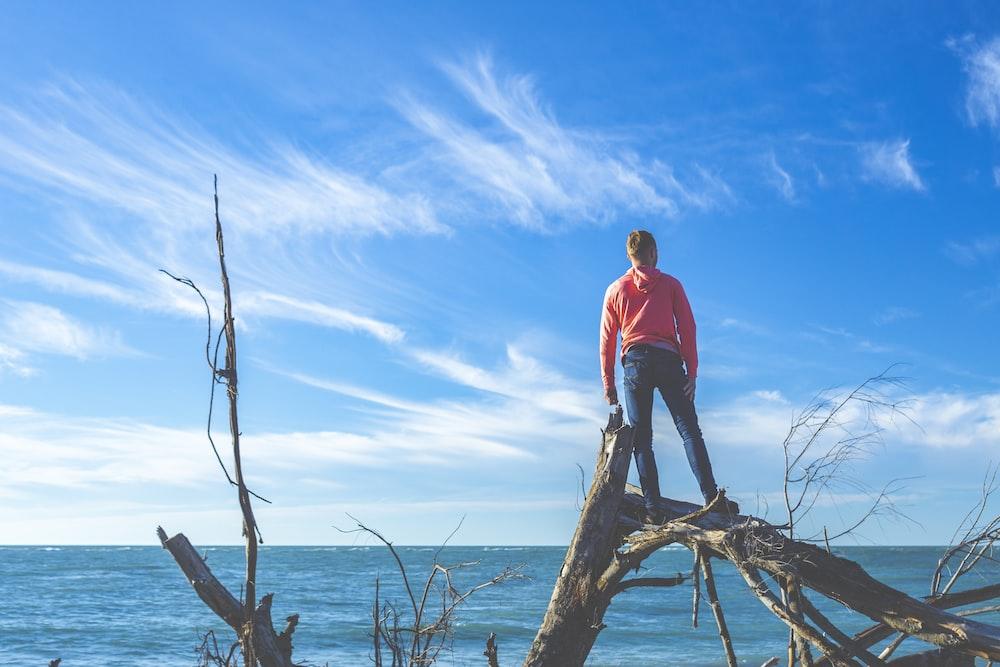 man standing on tree near body of water