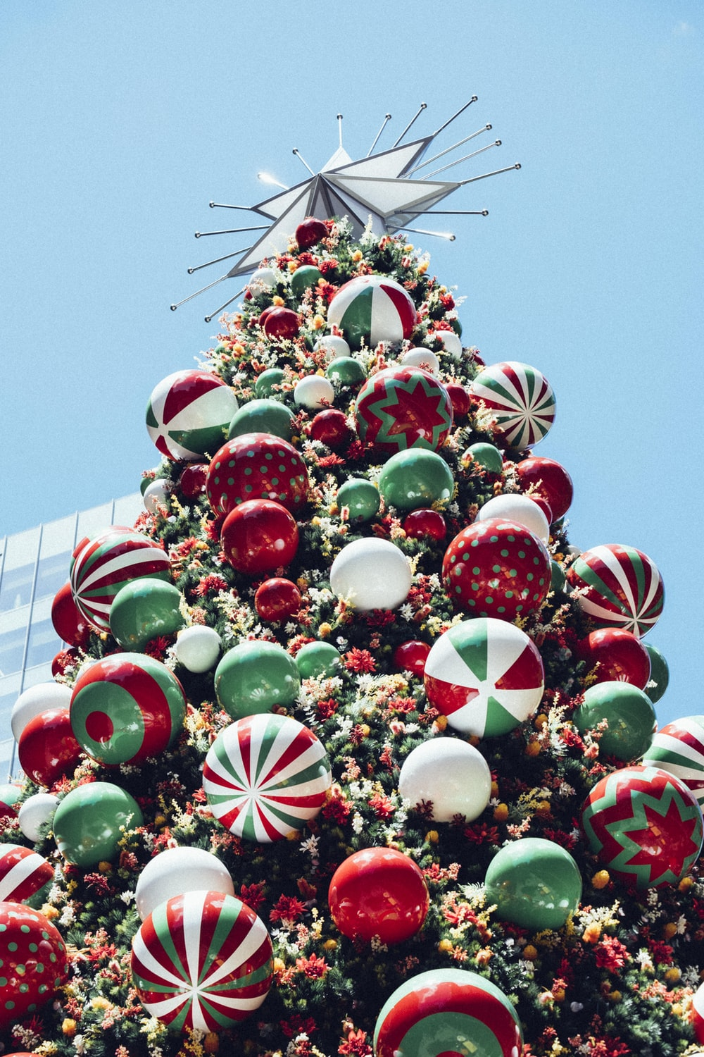 red, white, and green Christmas tree under blue sky