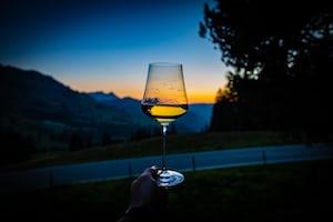 4678. Bor,szőlő, borászatok
