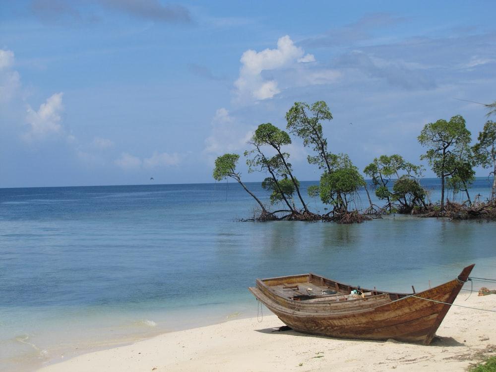 brown wooden jon boat on seashore