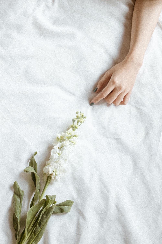flower near person's hand