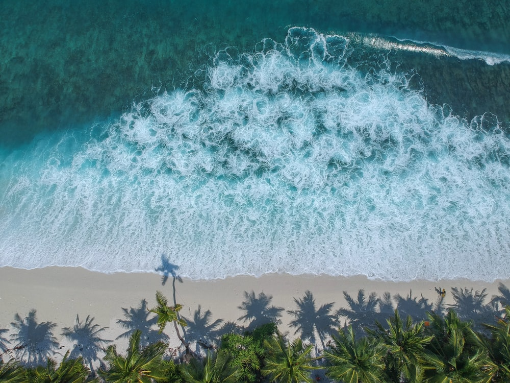 aerial beach seashore waves