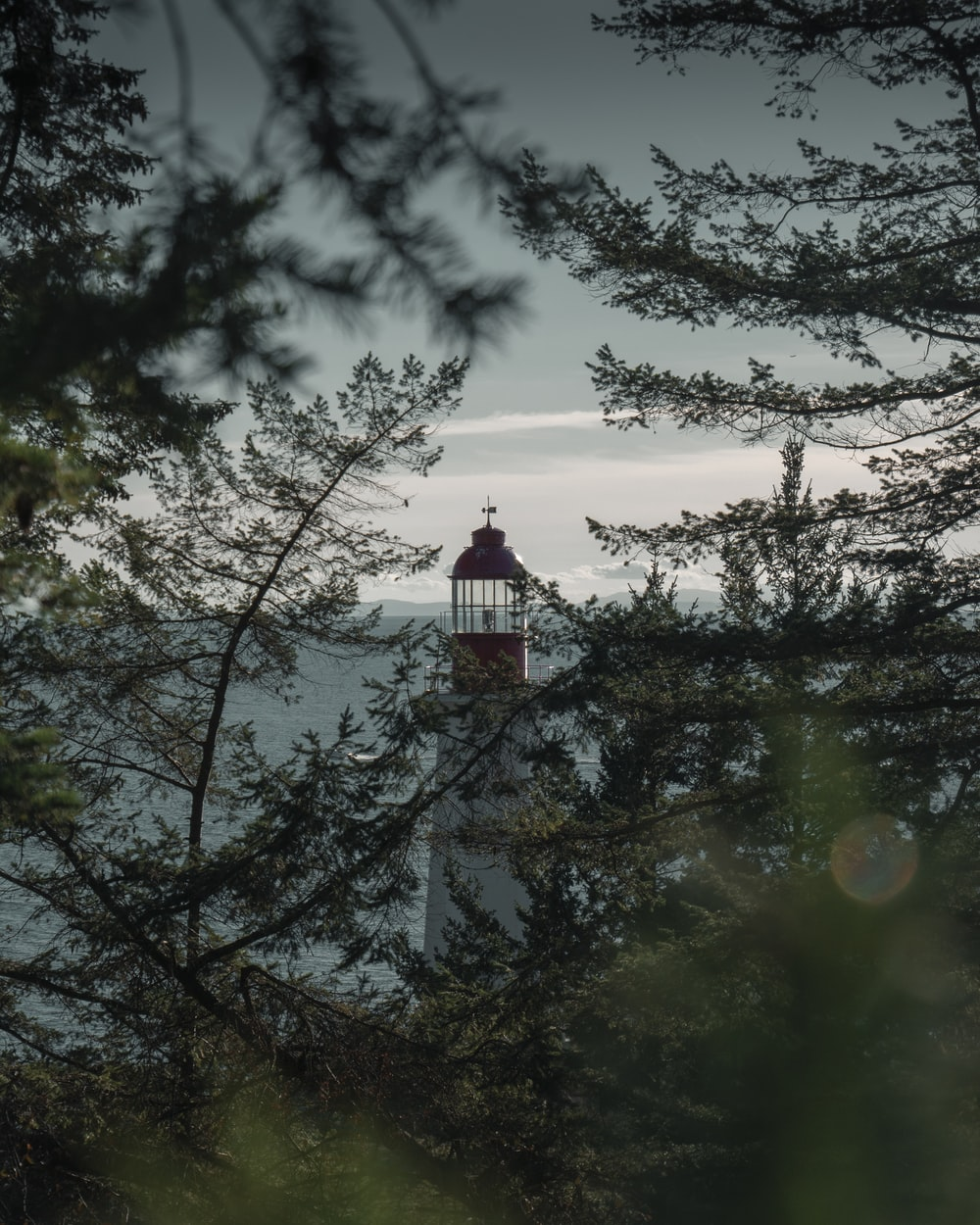 white and red lighthouse near trees